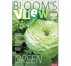 BLOOM's VIEW 1-19
