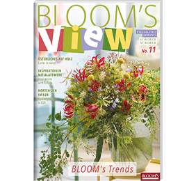 BLOOM's VIEW 1-20