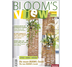 BLOOM's VIEW 1-21