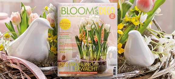 Bloom S Home Hobby